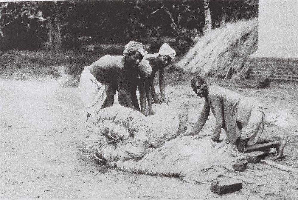 Kolonialgeschichte Südwestafrika Jute anbau